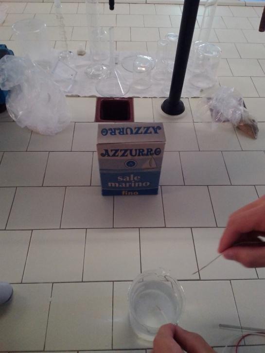 NaCl e acqua distillata.